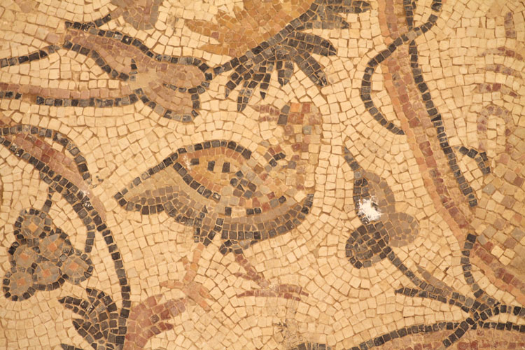 JBW mosaics of birds in Jordan