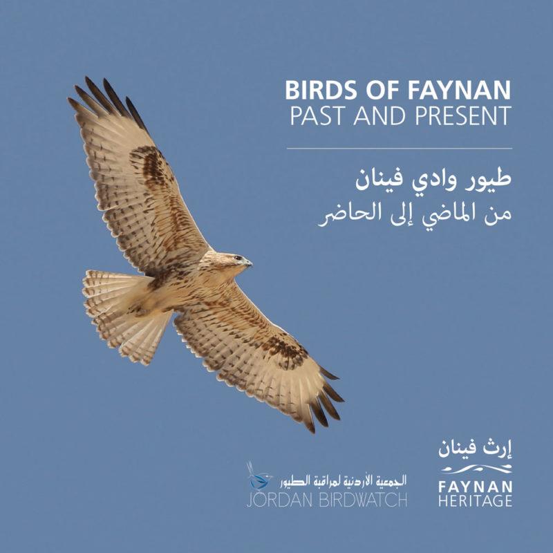 Birds of Faynan