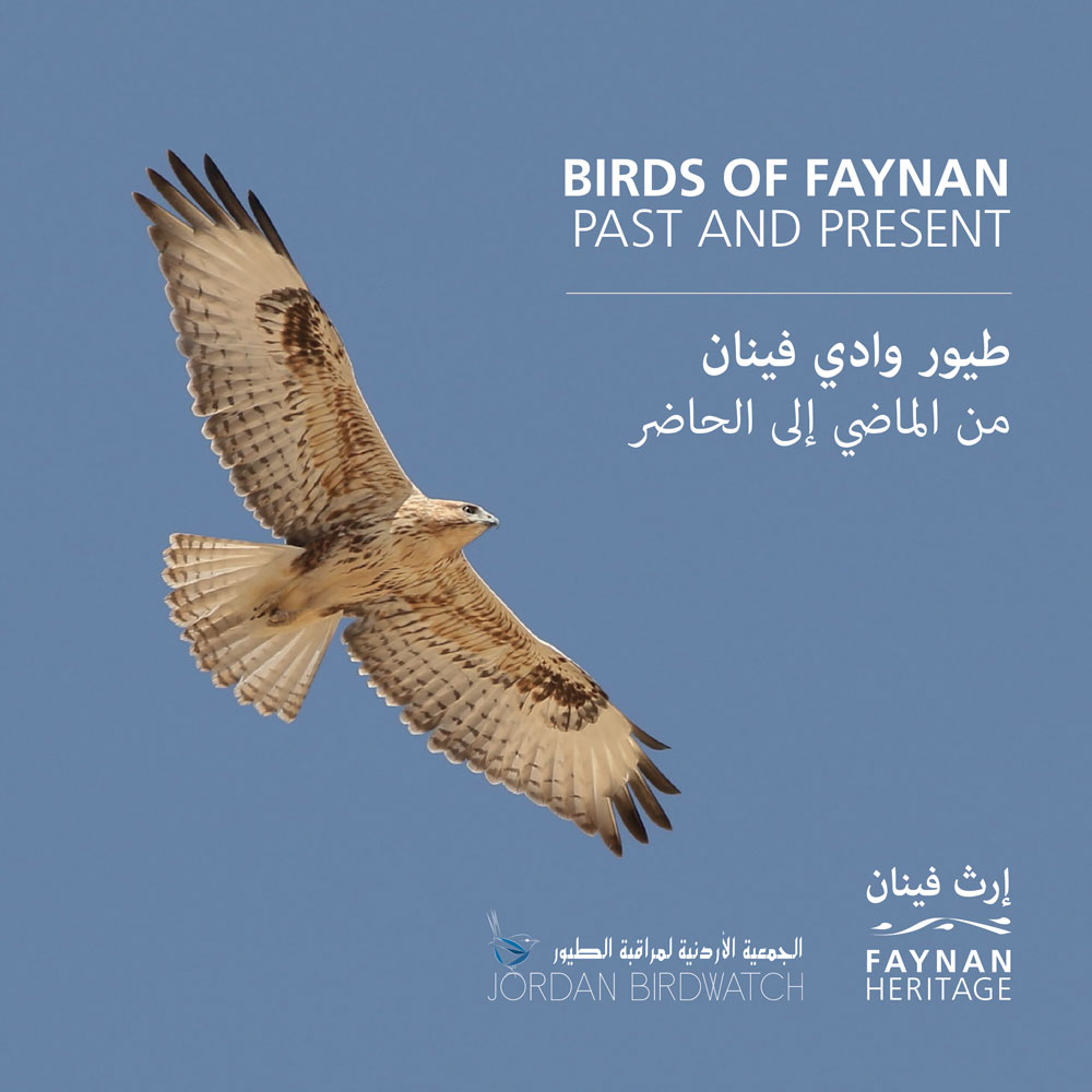 Birds of Faynan
