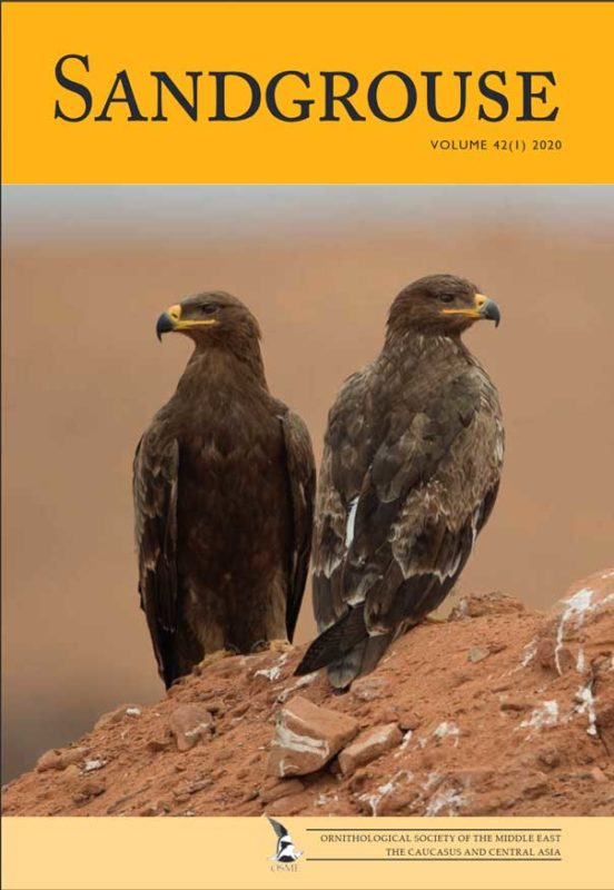 Sandgrouse journal